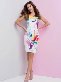 186171 Dress - Pink Multi (Frank Lyman)