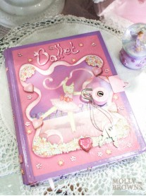 Fairy Secret Diary (Lucy Locket)