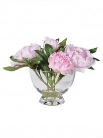 Pale Pink Peonies Arranged in Glass Footed Bowl