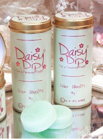 Daisy Dip Wax Melts