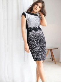 183543 Dress - Black/White (Joseph Ribkoff)
